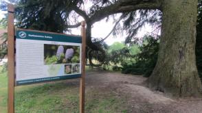 Najstarszy w kraju ogród dendrologiczny