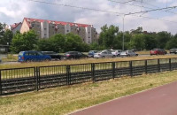 Korek na al. Havla w Gdańsku
