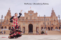 Flamenco La Paloma-Youmiko