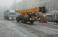Choinka już w Gdańsku