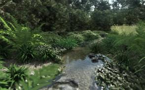 Projekt naturalistycznego strumyka - Ogród inspirowany naturą   Gdańsk Osowa   Pracownia STTYK