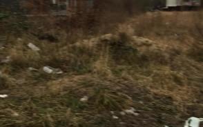 Śmieci na terenie Bastionu Wałowa
