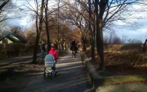 Człowiek na koniu jedzie chodnikiem