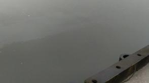 Zanieczyszczona Motława w Gdańsku