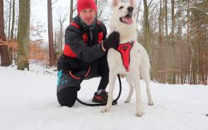 Jak biegać z psem. Jak zacząć i na co zwrócić uwagę?