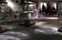 PSM TECHNIK - Producent reklam, kasetonów, liter 3D