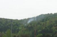 Pali się las na Gdyni Cisowej za Bodegą