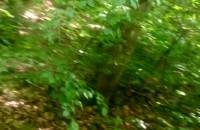 Najlepsza trasa rowerowa z Małego Kacka na Witomino