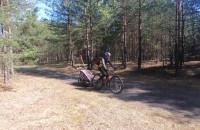 Bory Tucholskie rodzinnie na rowerach