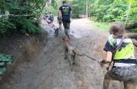 Ekstremalny bieg z psami