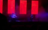 Organek gra Niemiłość w Operze Leśnej