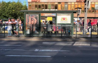 Ludzie czekają, a tramwajów na Chełm nie ma