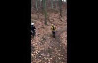 Rozjeżdżają las w Gdyni