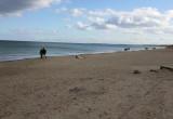 Czy to zwłoki leżą na plaży?