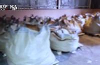 Przejęto ponad ćwierć tony heroiny w porcie w Gdyni