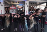 Pokazy semestralne Studia Tańca Siemanko