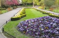 Park Oliwski wiosną