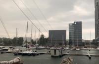 Deszcz w Gdyni