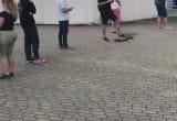 W Gdyni kolejka po zaświadczenie