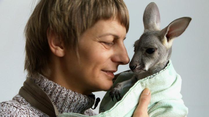 Zobacz, jak Beata Czechowska wychowywała kangurzycę Tosię.