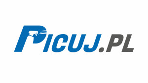 Logo Picuj.pl