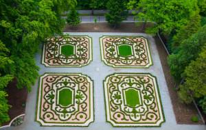 Nowy ogród francuski w Parku Oliwskim. Po nim czas na japoński