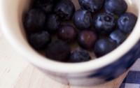 Jagodowe złoża zdrowia