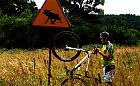 Szlak rowerowy Kamiennych Kręgów