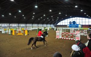 Aktywny weekend: Biegi, konie i Św. Mikołaj