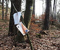 Czytelnik: ratownicy zanieczyszczają las