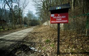 Leśne ścieżki dla biegaczy. Przydatne czy to wymyślanie koła?