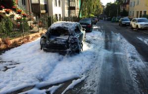 Biegli przebadali podpalacza samochodów