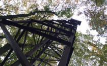 Leśna wieża: zapomniany relikt lotniska we...