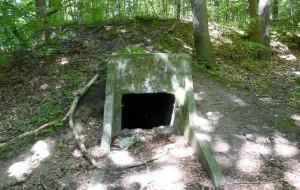 Gdynia: zamiast wycieczki, bieg po bunkrach