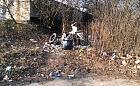 Detektywi i kamery w walce z dzikimi wysypiskami śmieci
