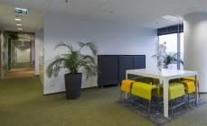 Zieleń i kwiaty w miejscu pracy
