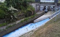 Niebieska woda w potoku Żródło Marii i...