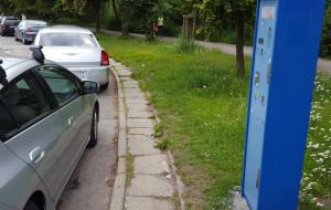 Miasto nieugięte w sprawie płatnych parkingów w pasie nadmorskim