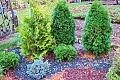 Jak zabezpieczyć ogród na zimę
