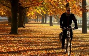 Bezpieczeństwo i infrastruktura rowerowa w miastach