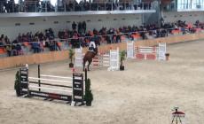 Kilka praktycznych rad na zawody jeździeckie