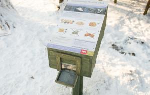 W gdańskich parkach stanęły kaczkomaty