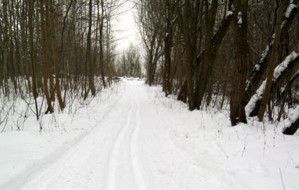 Gdzie na narty biegowe w Trójmieście?