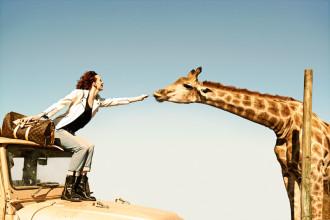 Dzikość i kontrowersje, czyli egzotyczne zwierzęta w branży mody