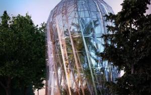 Tak może wyglądać rotunda palmiarni w Parku Oliwskim