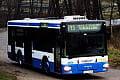 Gdynia: więcej autobusów między dzielnicami