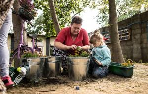 W Gdyni rozkwitną ogrody społeczne