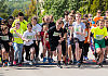 Prawie 650 biegaczy na GP w Kokoszkach