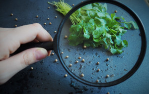 Okiem dietetyka: przyprawy w zdrowej diecie