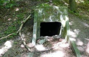 Fortyfikacje w Redłowie częściowo dostępne